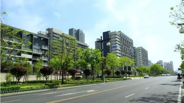 城市道路景观与植物造景理念杭州枫桓绿化带你了解